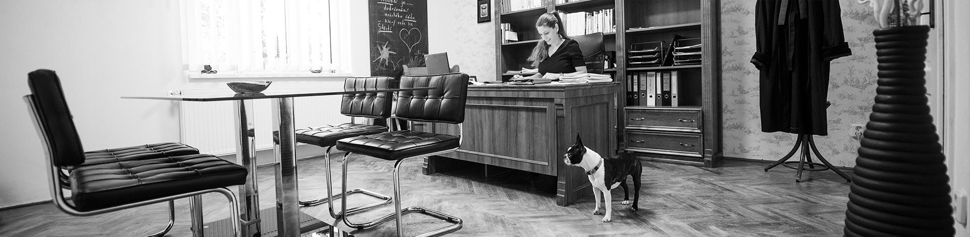 Advokátní kancelář Decroix